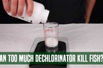 Can Too Much Dechlorinator Kill Fish